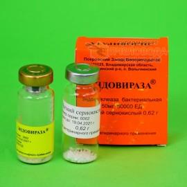 Эндовираза – лечение вирусных заболеваний